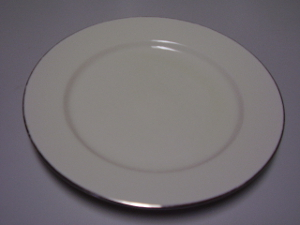 10 inch Dinner plates